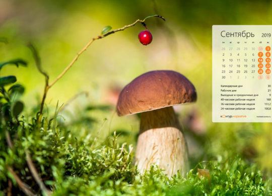 normativ_calendar_2019_9_1